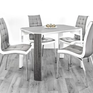 Raja 110 Dining Set 4 Grey/White Chair