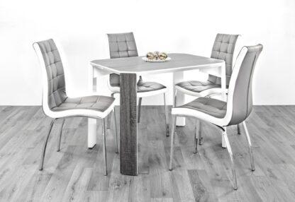 Raja 110 Dining Set 4 Grey/White Chair
